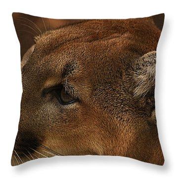 I'm Watching You... Throw Pillow by Tammy Schneider