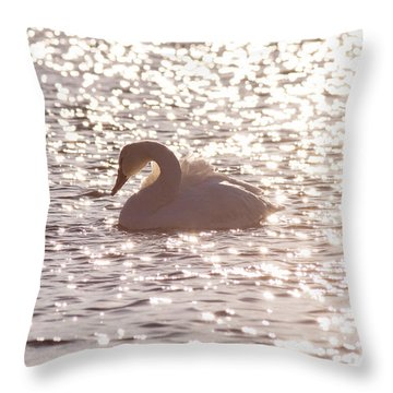 Immersed In Light Throw Pillow
