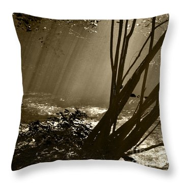 Imminent Apparition Throw Pillow
