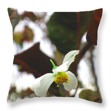Imminent Demise Throw Pillow