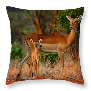 Impala And Young Throw Pillow by Amanda Stadther