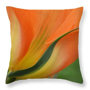 Imperfect Beauty Throw Pillow by Felicia Tica