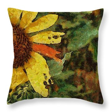 Imperfect Beauty Throw Pillow by Jeff Kolker