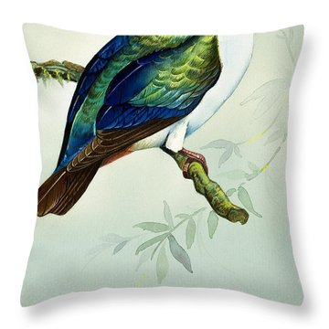 Imperial Fruit Pigeon Throw Pillow by Bert Illoss