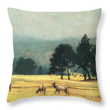 Impression Evergreen Colorado Throw Pillow