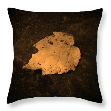 Impressions Throw Pillow by Chris Berry