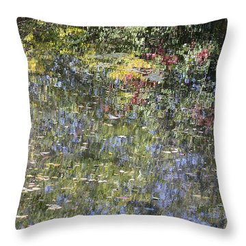Throw Pillow featuring the photograph Impressions Of Autumn by Andrew Pacheco