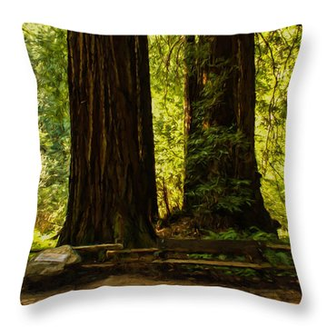 Impressions Of Muir Woods California Throw Pillow