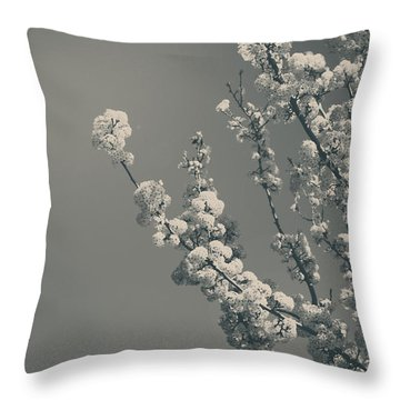 In A Beautiful World Throw Pillow by Laurie Search