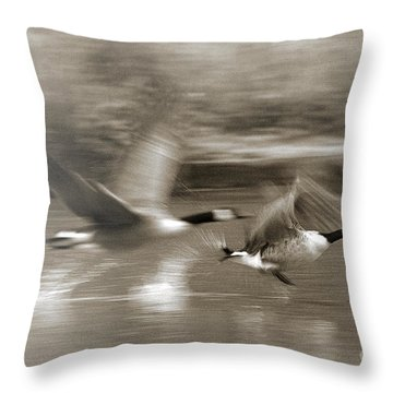 In A Blur Of Feathers Throw Pillow