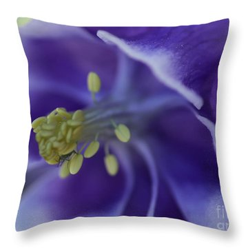 In A Bugs World Throw Pillow
