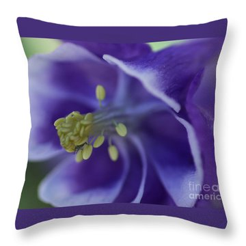 In A Bugs World Throw Pillow by Mary Lou Chmura