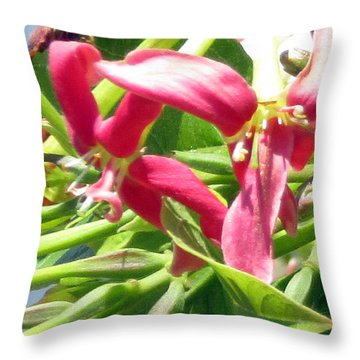 In A Daze Throw Pillow