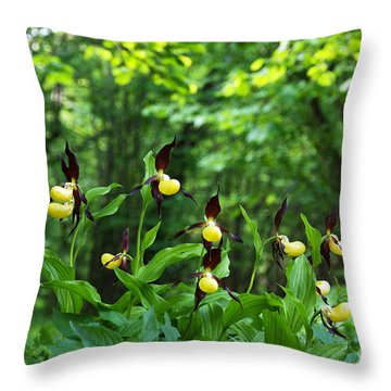 Throw Pillow featuring the photograph In A Forest Glade by Kennerth and Birgitta Kullman