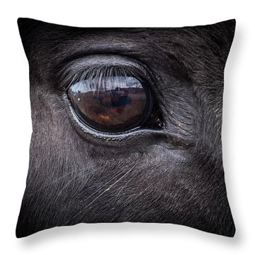 In A Horse's Eye Throw Pillow
