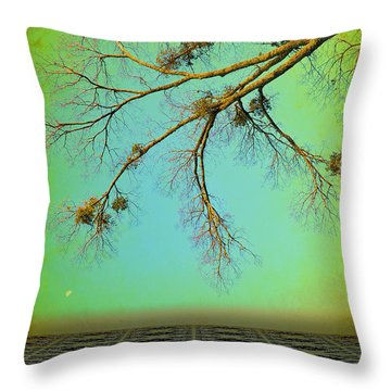 In A Land Far Far Away Throw Pillow by Jan Amiss Photography