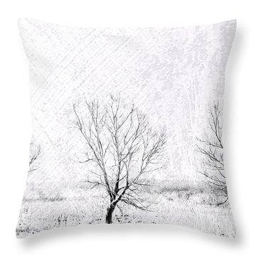 In A Line. Winter Trees Throw Pillow by Jenny Rainbow