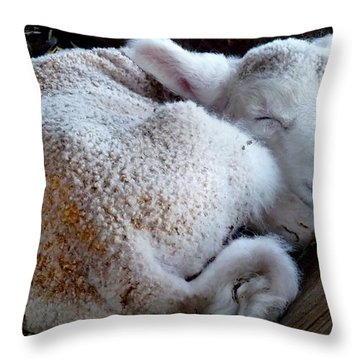 In A Manger Throw Pillow