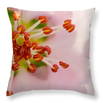 In A Pink Cloud Throw Pillow