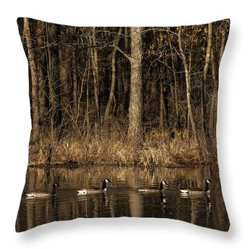 In A Row Throw Pillow