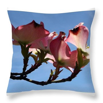 In All Its Glory Throw Pillow by Sara  Raber
