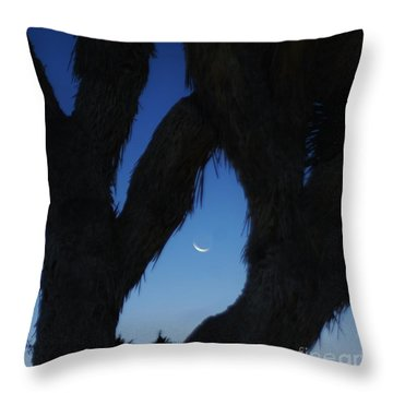 Throw Pillow featuring the photograph In-between by Angela J Wright