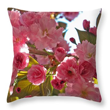 In Bloom Throw Pillow by Barbara McDevitt