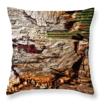 Throw Pillow featuring the photograph In Box Canyon Abstract Square by Lee Craig
