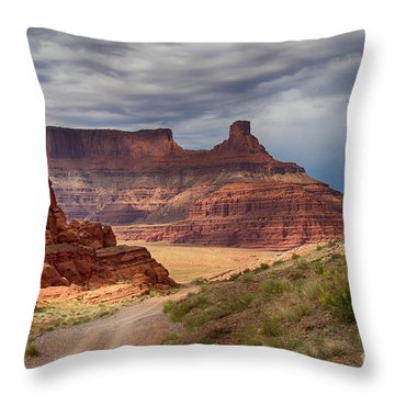 Throw Pillow featuring the photograph In Canyonlands Np by Juergen Klust