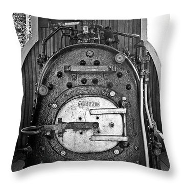 Throw Pillow featuring the photograph In Control B by Sara  Raber