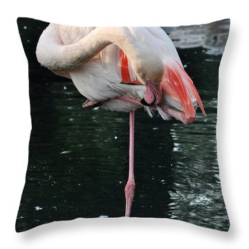 In Equilibrium Throw Pillow