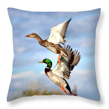 In-flight Throw Pillow