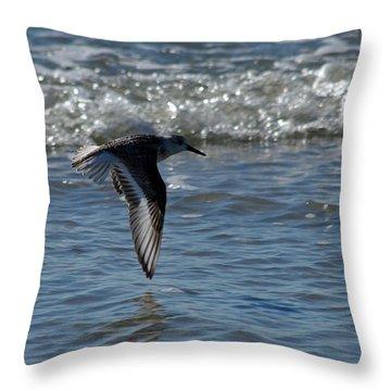 In Flight Throw Pillow by Greg Graham
