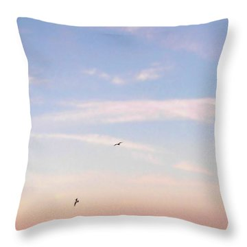 Throw Pillow featuring the photograph In Flight Over Rehoboth Bay by Pamela Hyde Wilson