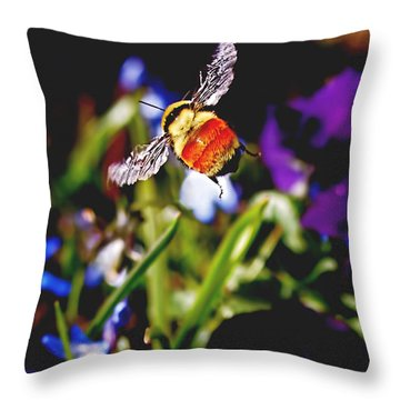 In Flight Throw Pillow by Rona Black