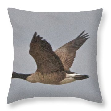 Throw Pillow featuring the photograph In Flight by William Norton