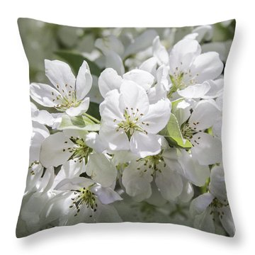 In Full Bloom Throw Pillow by Arlene Carmel