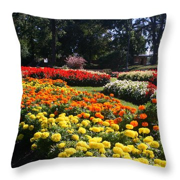 In Full Bloom Throw Pillow by Kay Novy