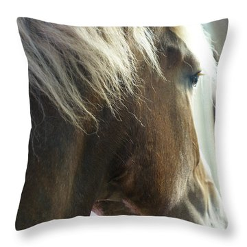 Throw Pillow featuring the photograph In His Farthest Wanderings Still He Sees by Linda Shafer