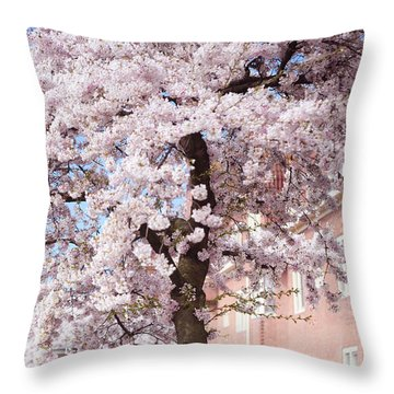 In Its Glory. Pink Spring In Amsterdam Throw Pillow