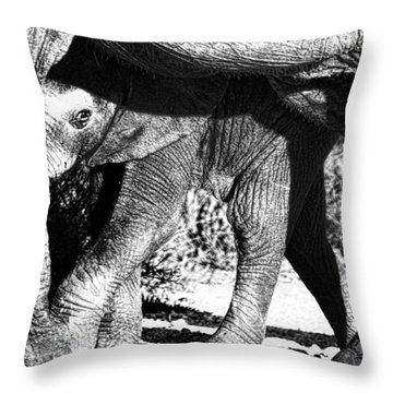 In Mother's Shadow Throw Pillow
