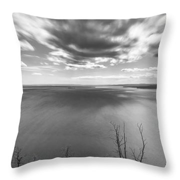 In Motions Throw Pillow by Jon Glaser