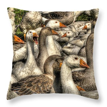 Throw Pillow featuring the photograph In My Humble Opinion by William Fields