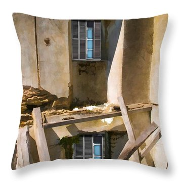 In Need Of Repair Throw Pillow by Liane Wright