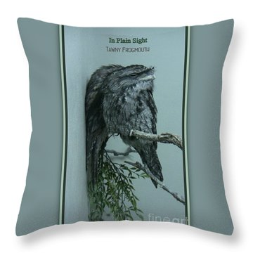 In Plain Sight Throw Pillow