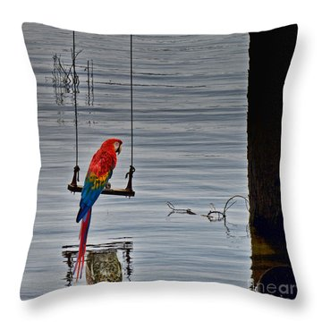 In Reflective Mood Throw Pillow