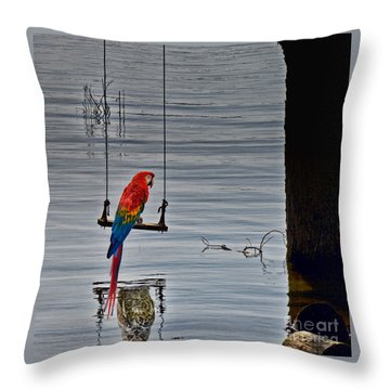 In Reflective Mood Throw Pillow by Les Palenik