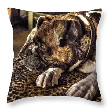 In Repose Throw Pillow by William Fields