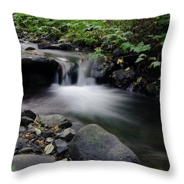 In Slow Pools Where Serenity Abounds Throw Pillow by Jeff Swan