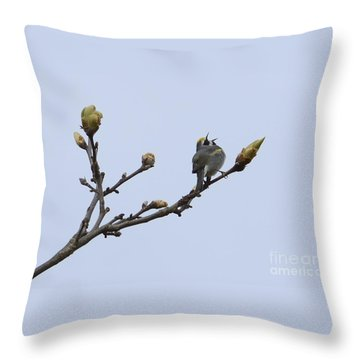 In Song Throw Pillow by Randy Bodkins